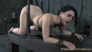 Gorgeous brunette babe Katharine Cane fucked in doggy style position